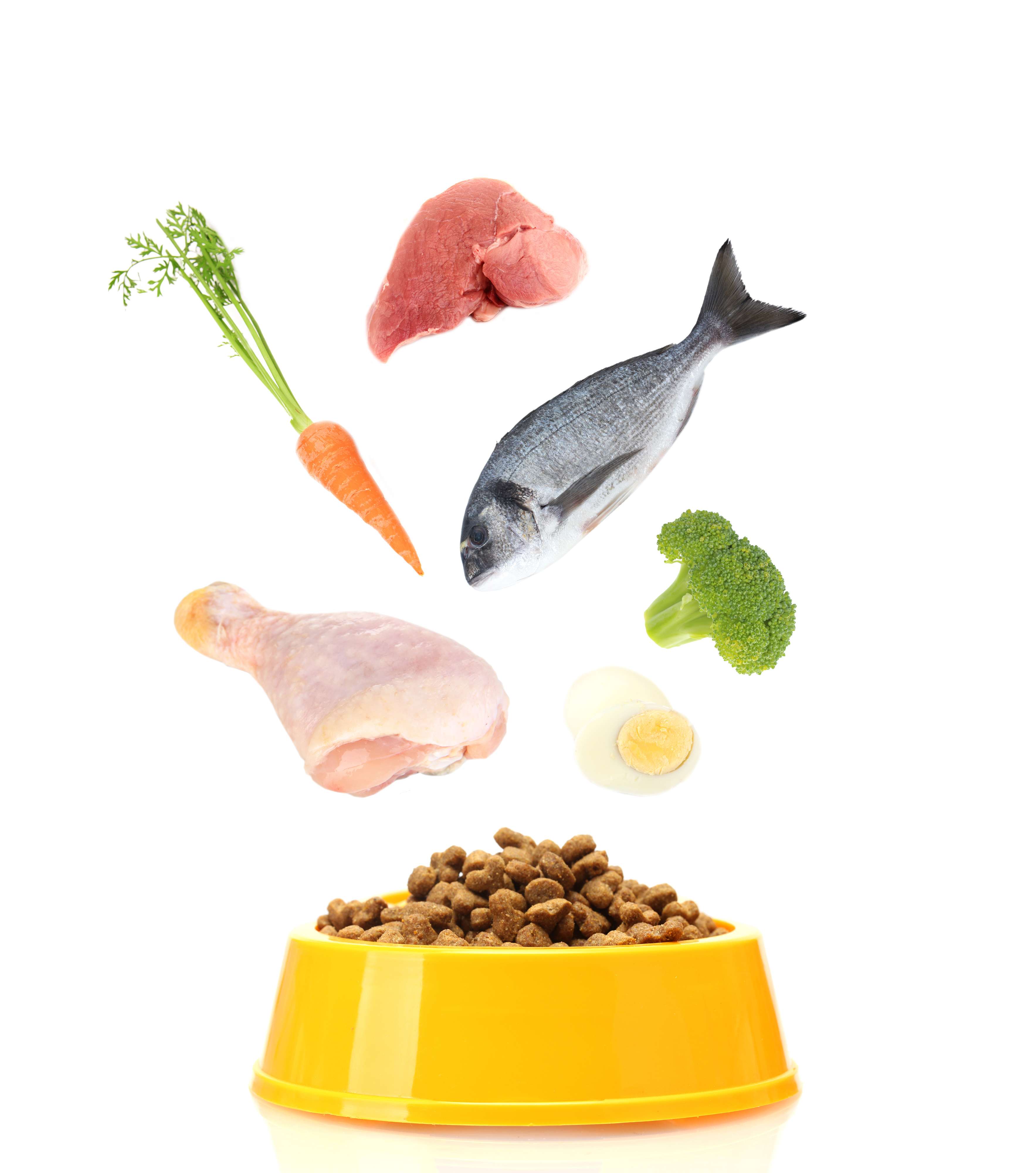 An image of a yellow cat bowl showing different ingredients going in